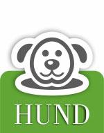 Schwedt Fauna - Hund