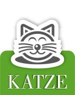 Schwedt Fauna - Katze