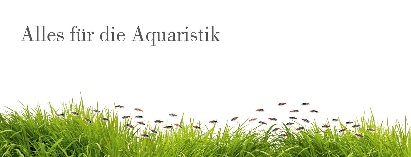 Schwedt Fauna - Alles für die Aquaristik