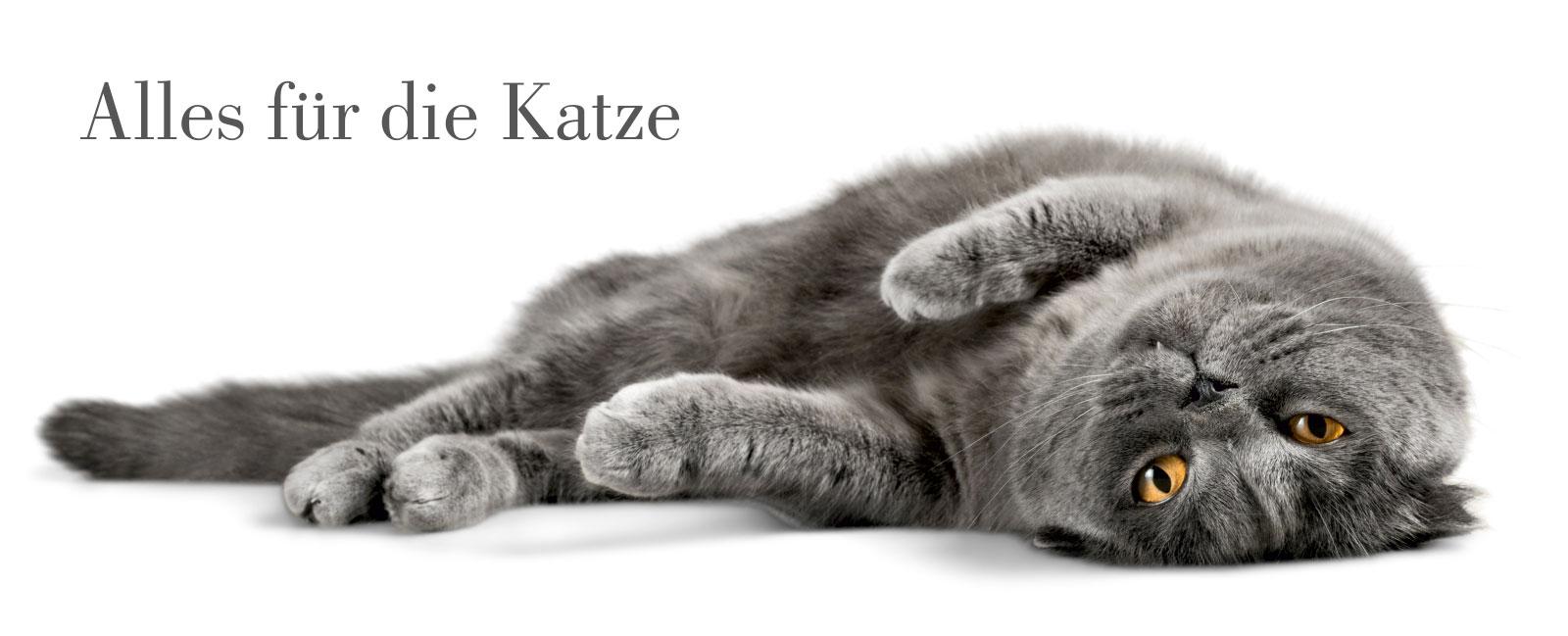 Schwedt Fauna - Alles für die Katze